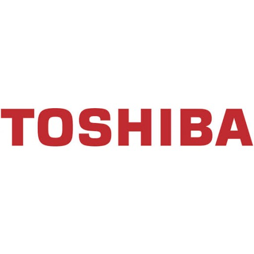 Toshiba 6LJ14058100 Maintenance Kit, E-Studio 355, 356, 455, 456, 506 - Genuine