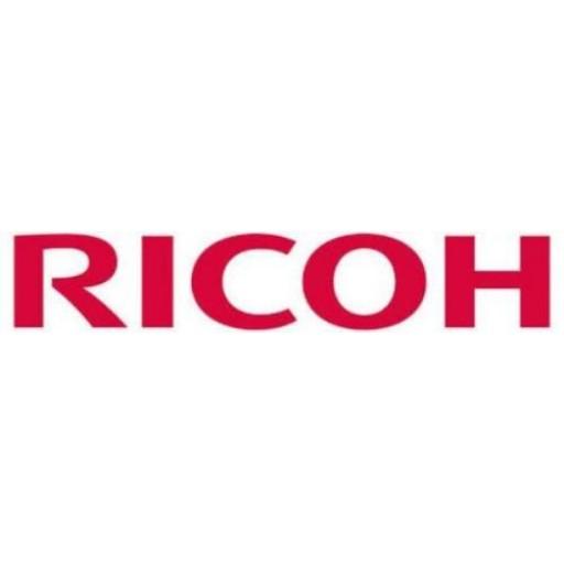 Ricoh D1176256, Electrode Plate, MP301SPF- Original