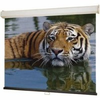 Draper Group Ltd DR116399, Projection Screen