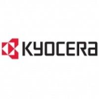 Kyocera 870LM00088, 256MB Printing Memory Uprgrade